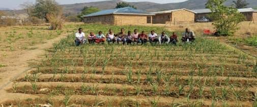 Food Gardens At Rural Schools