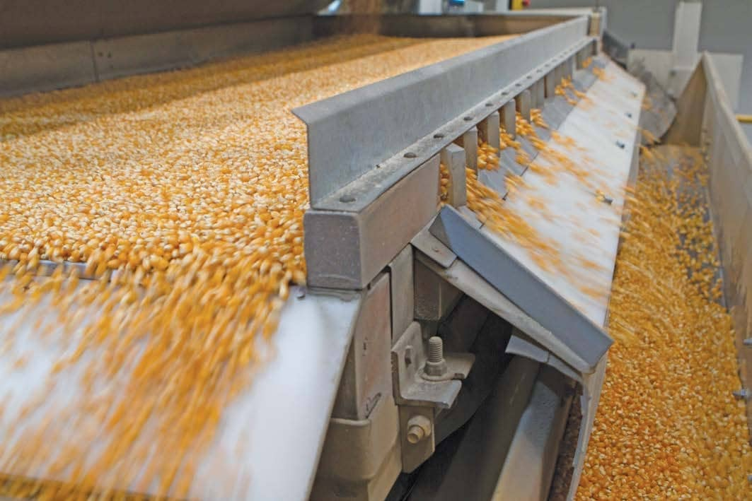 Consistent Quality Ensures Success For Popcorn Exporter