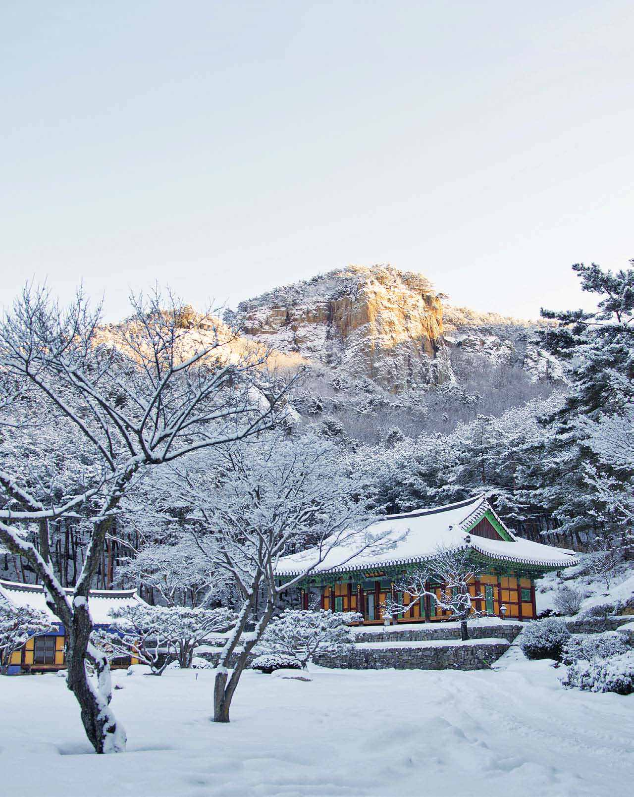 Experience South Korea's Magical Winter