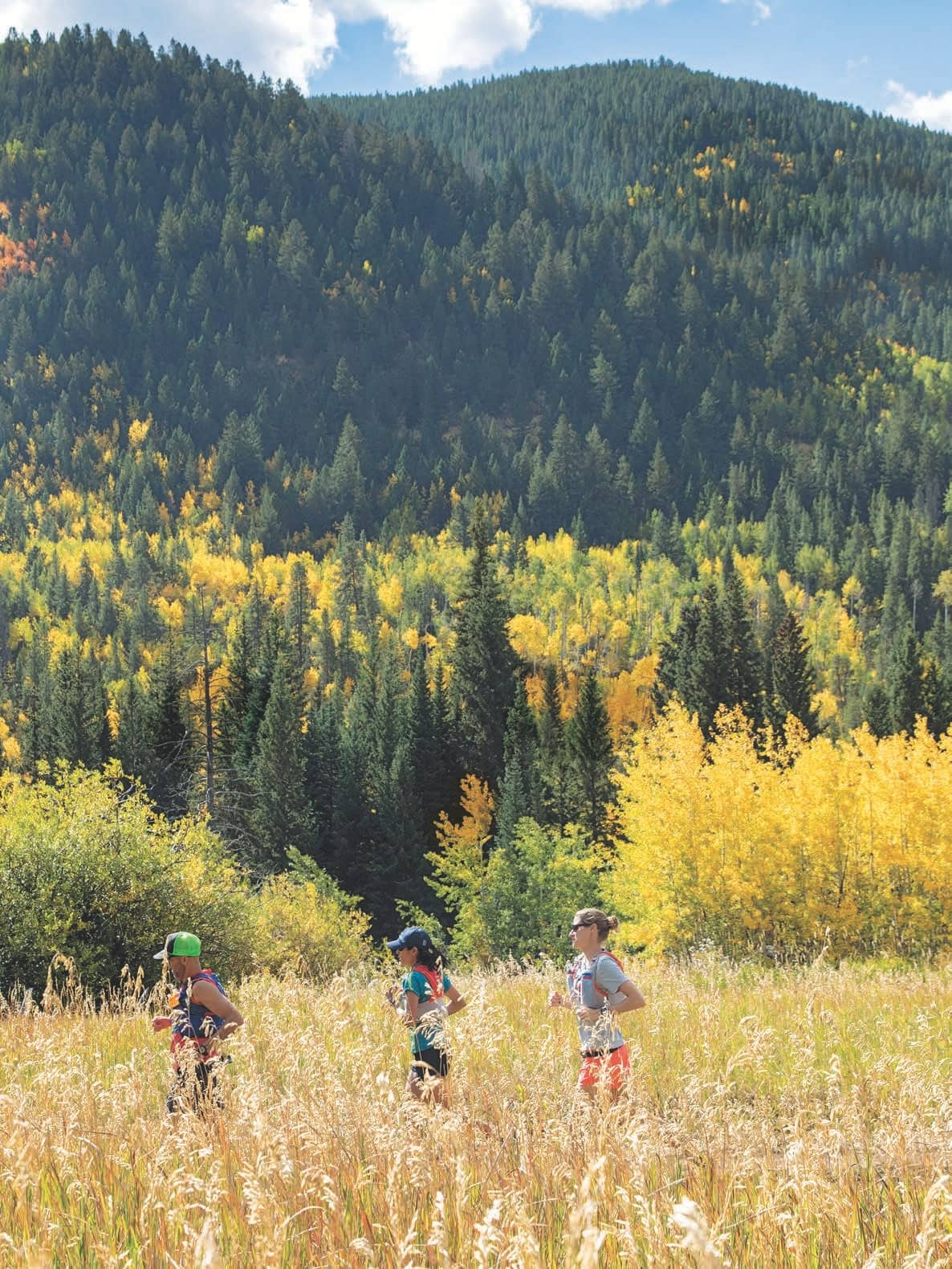 Colorado Rockies - The Run Of Your Life
