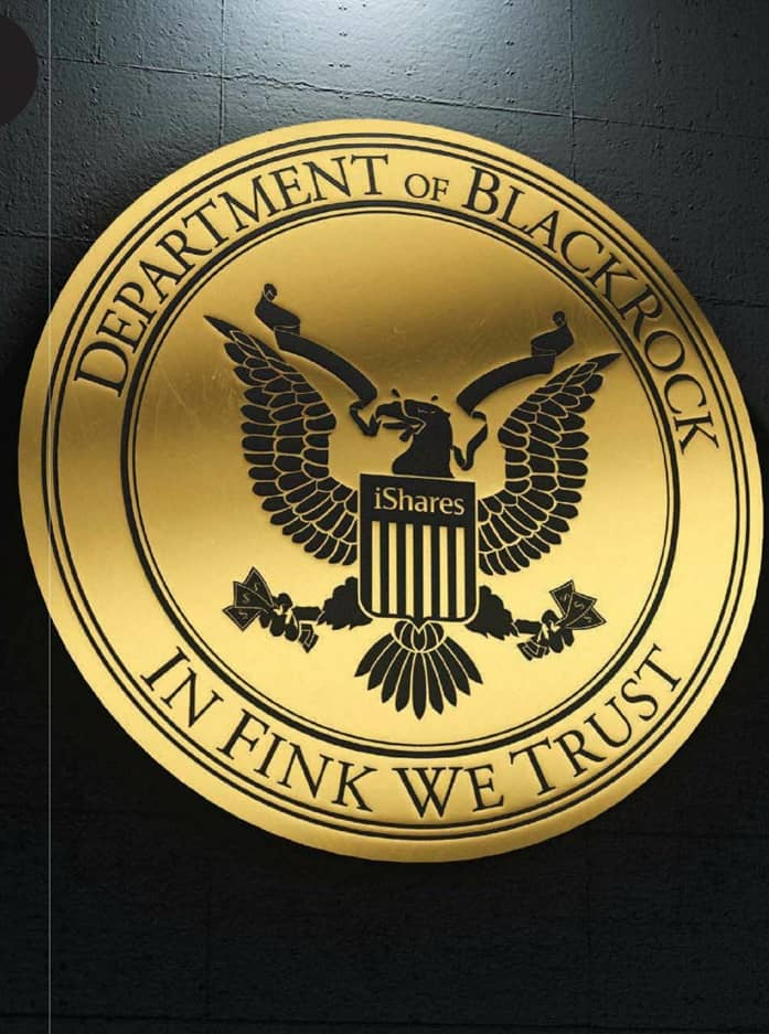 BlackRock, the government's Wall Street whisperer
