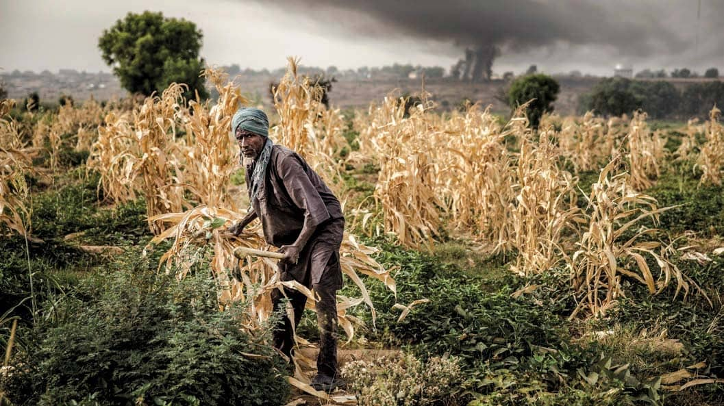 The Specter of Hunger in Nigeria