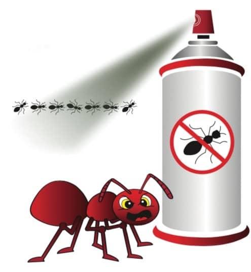 ANTS that bite