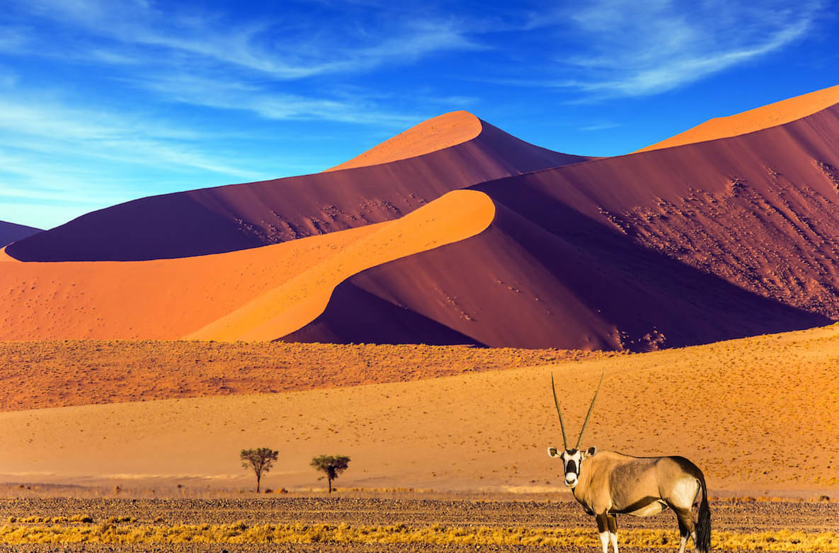 NAMIBIA: THE DRIEST COUNTRY IN AFRICA