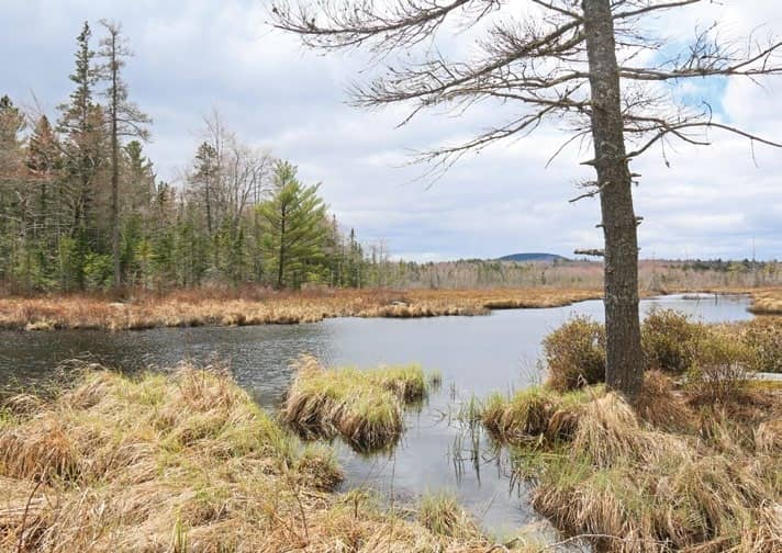 Selectmen consider giving public access to Sperry Pond