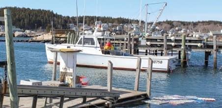 A shortened halibut season to start