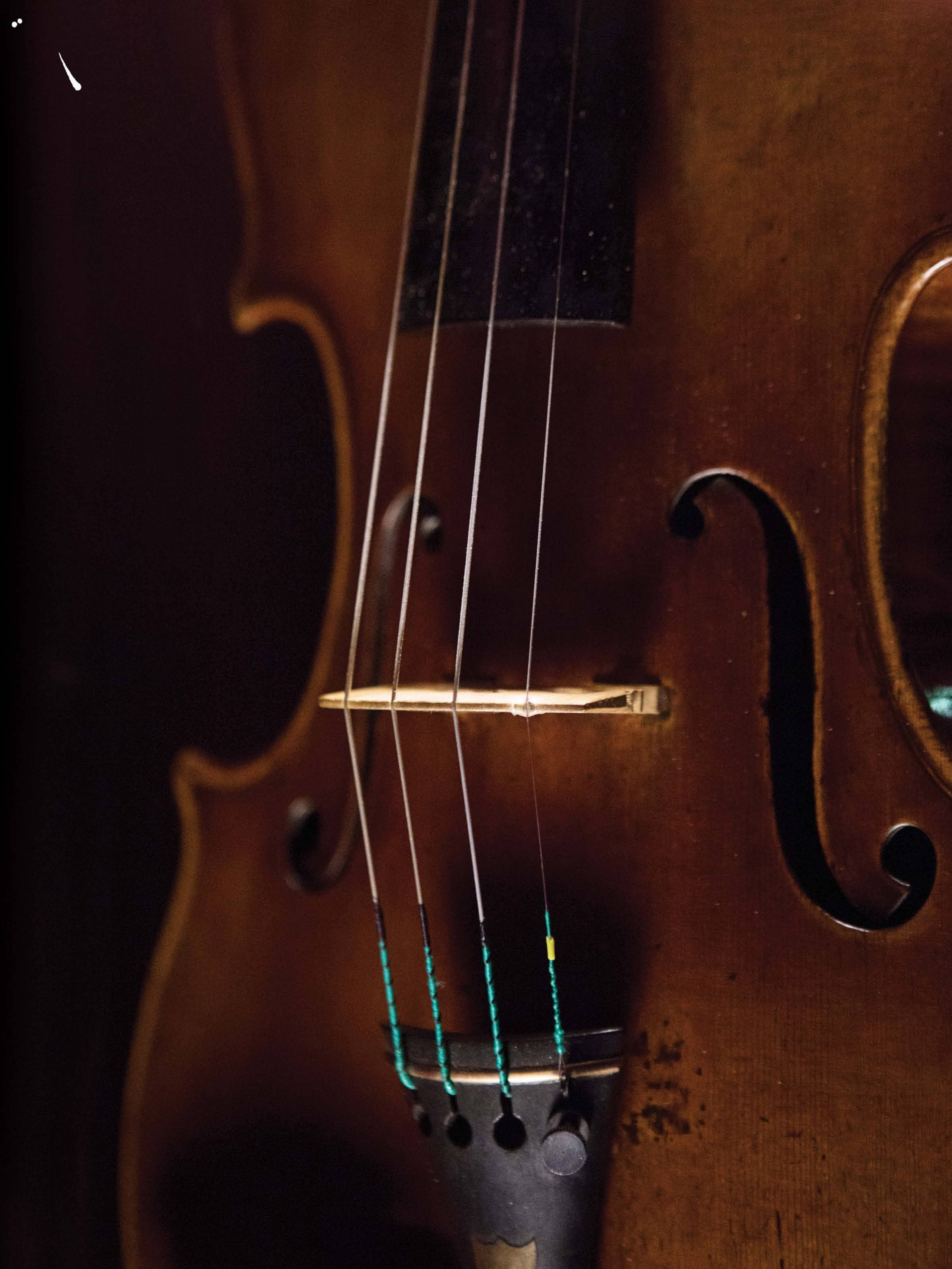 The Song Of The Immortal Violin
