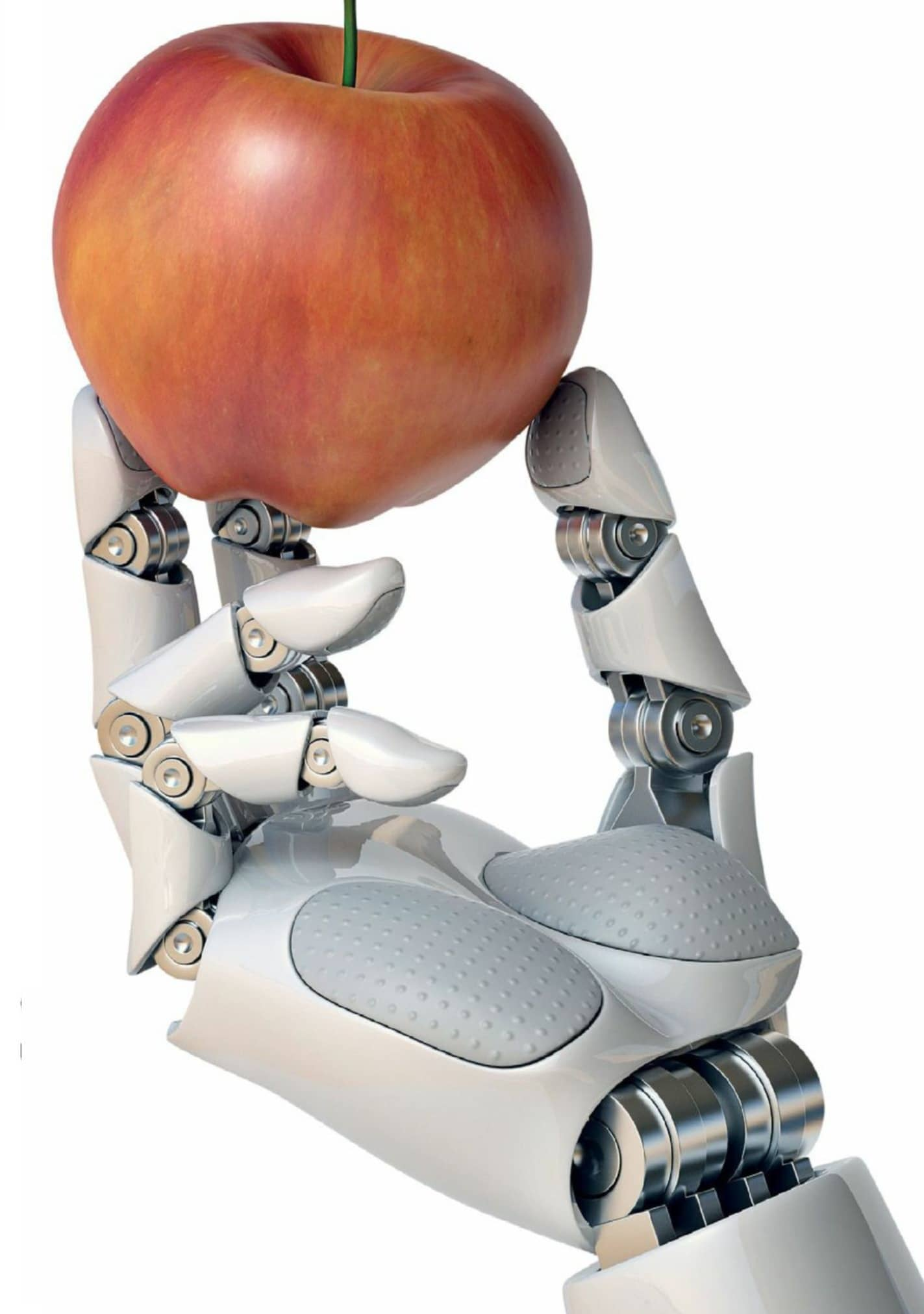 From Apples To Androids