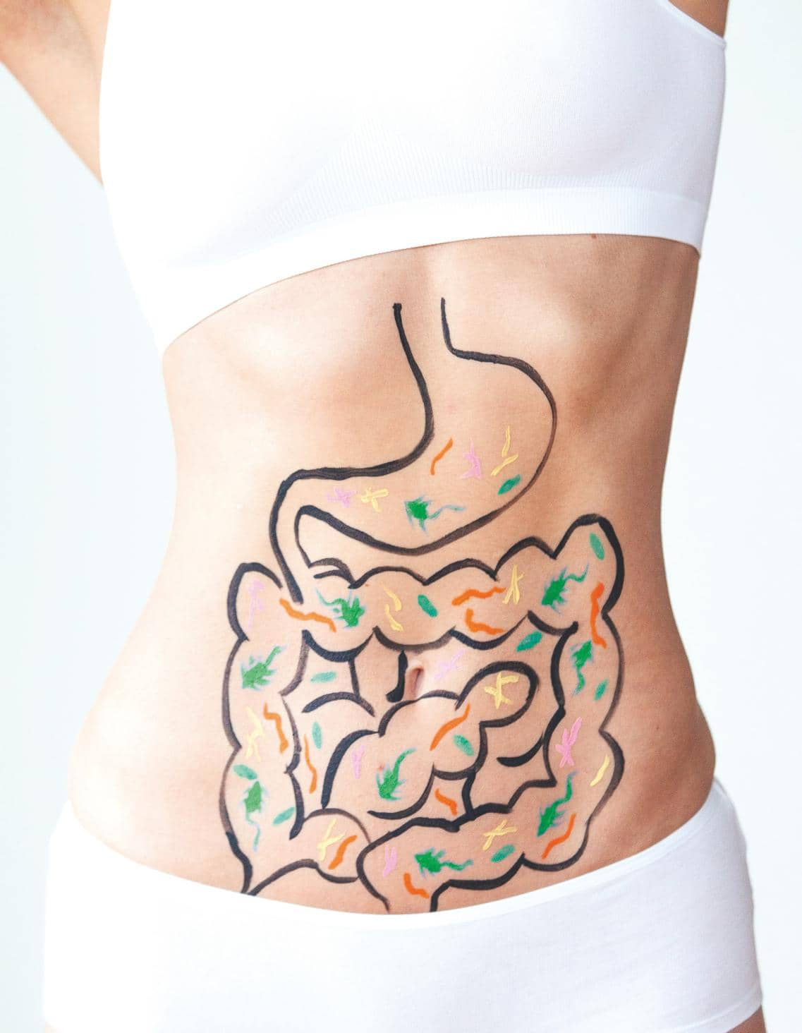 Does Your Gut Rule Your Head?