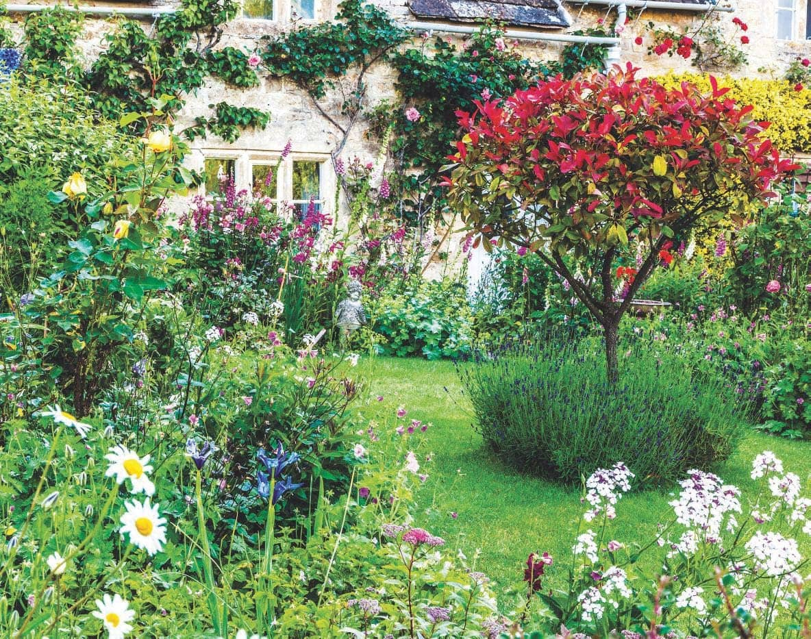 How To Create Your Own Cottage Garden