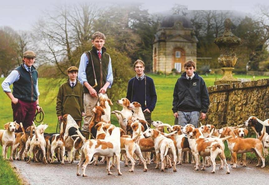 School beagle pack master
