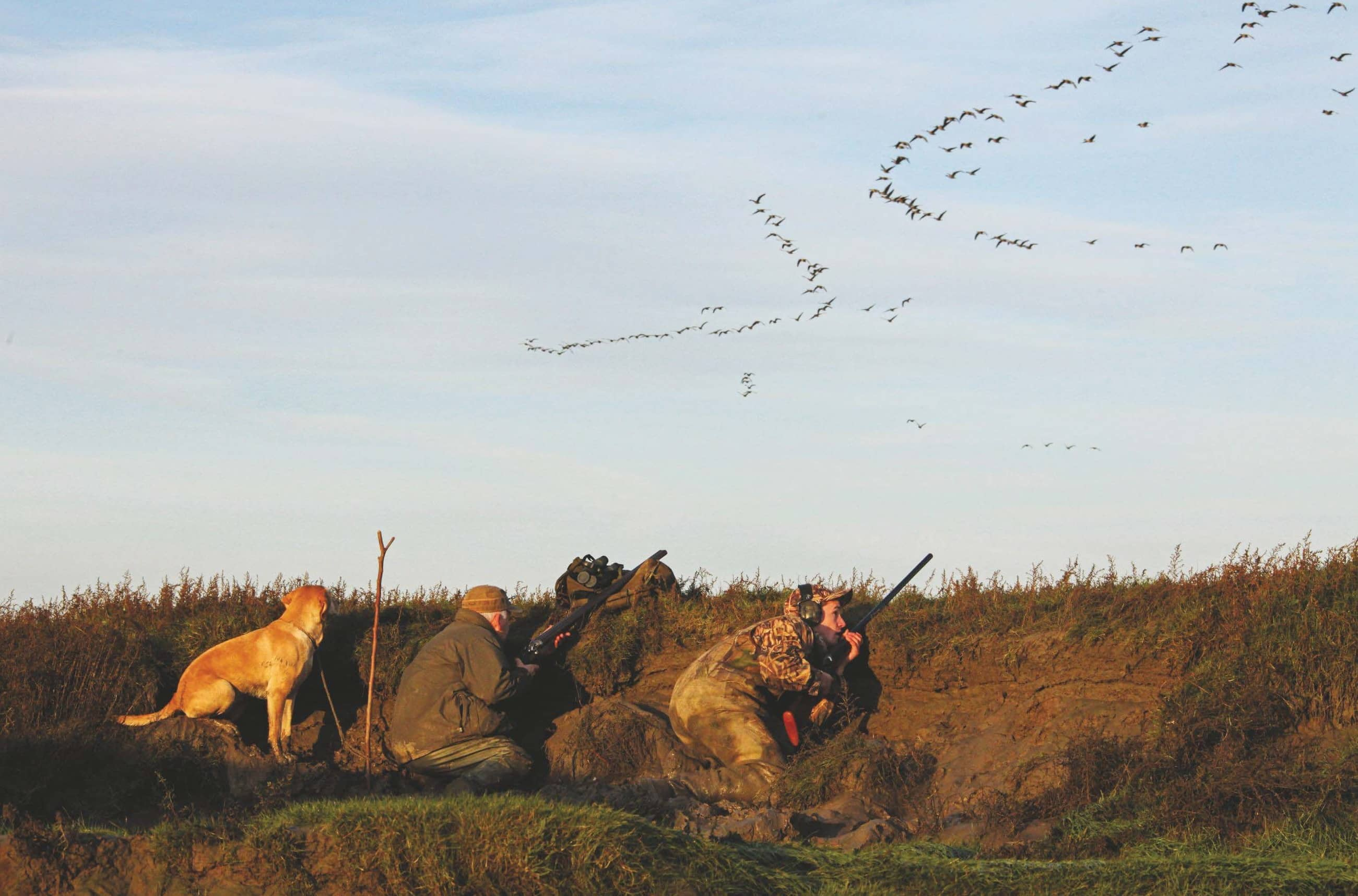Arthur's eight-bore returns to the marshes