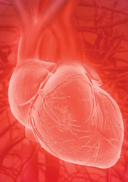 Strength Training And Bodybuilding May Cause Enlarged Aortas!
