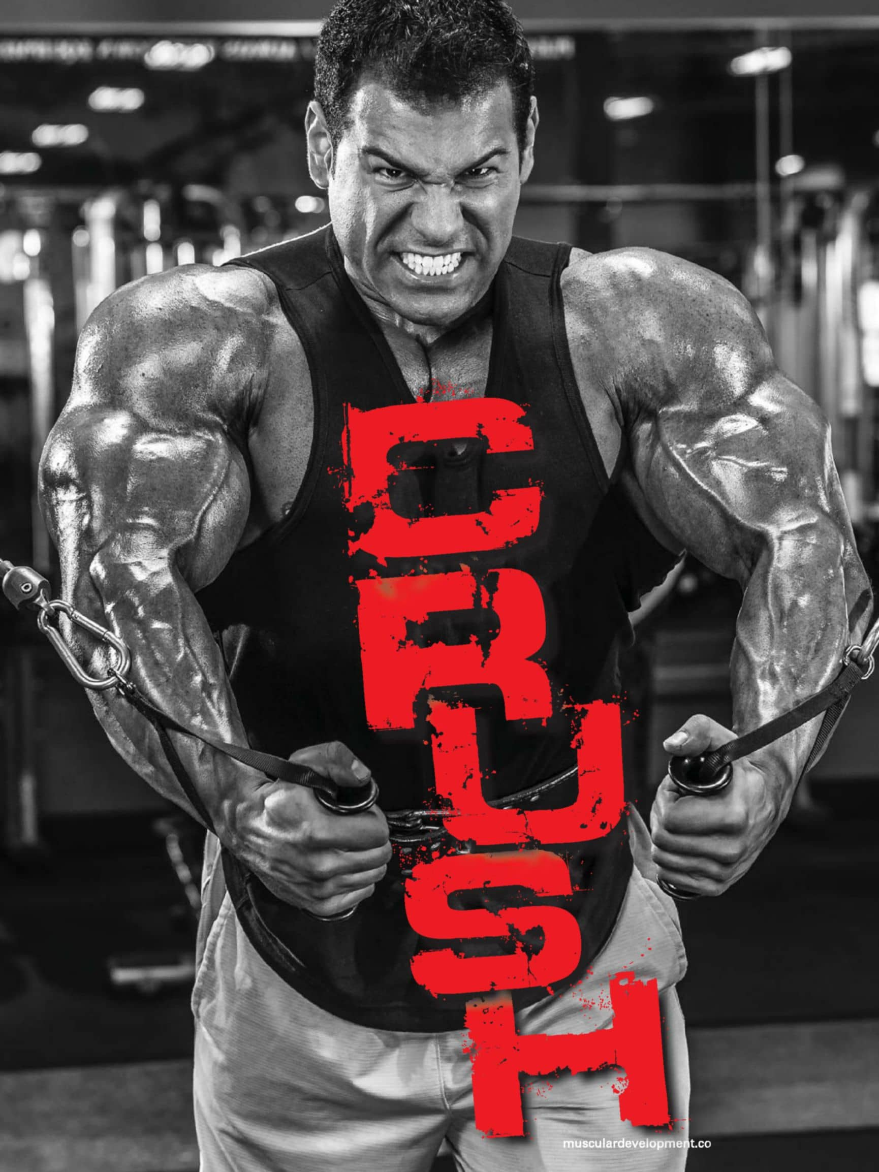 Crush Your Excuses!