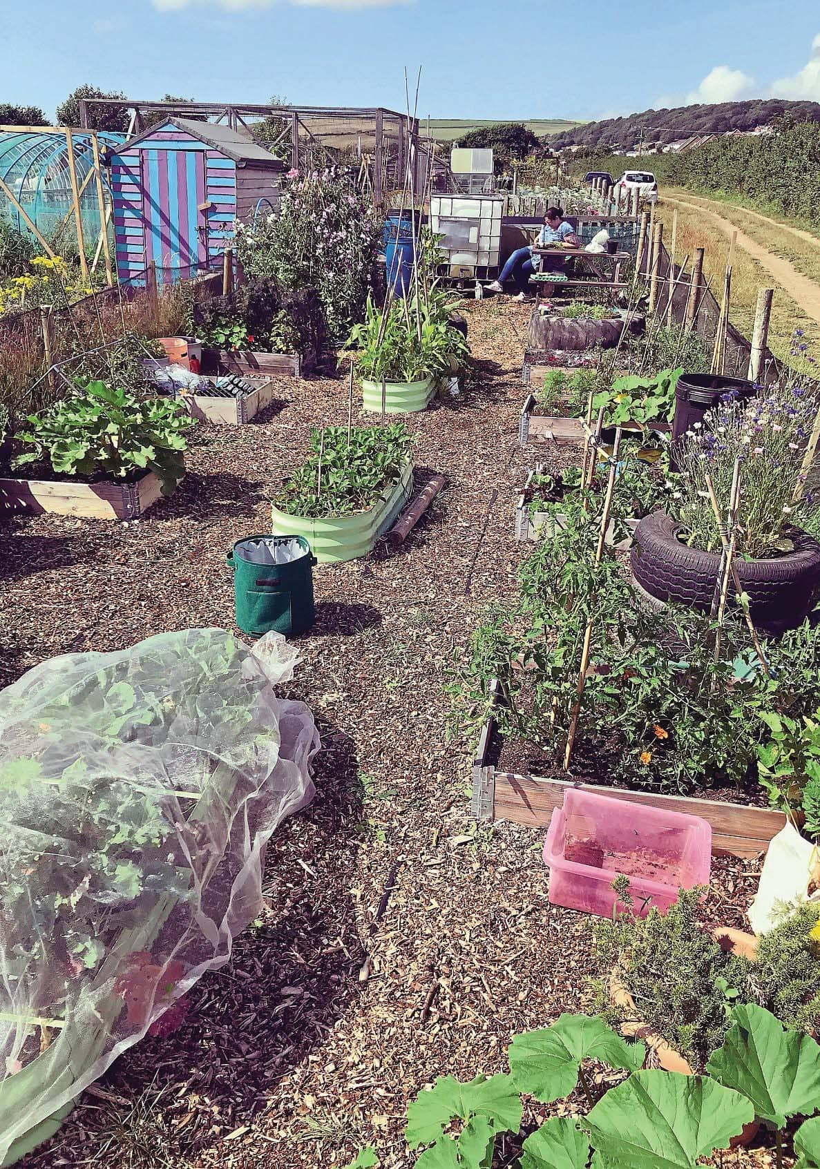 Happiness is… an allotment