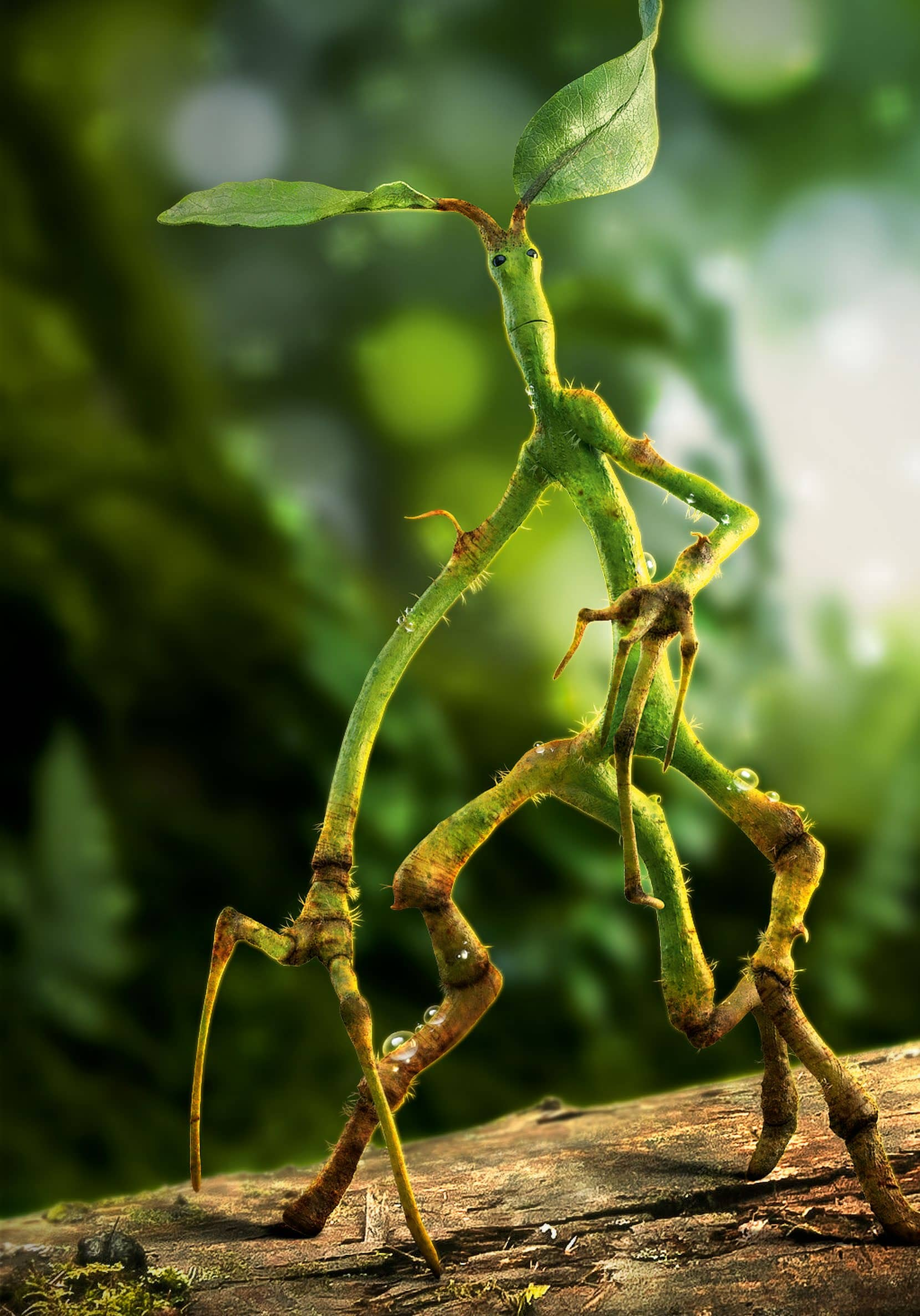 Create Your Own Pickett, The Bowtruckle