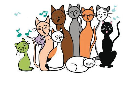 Cat Genetics 101