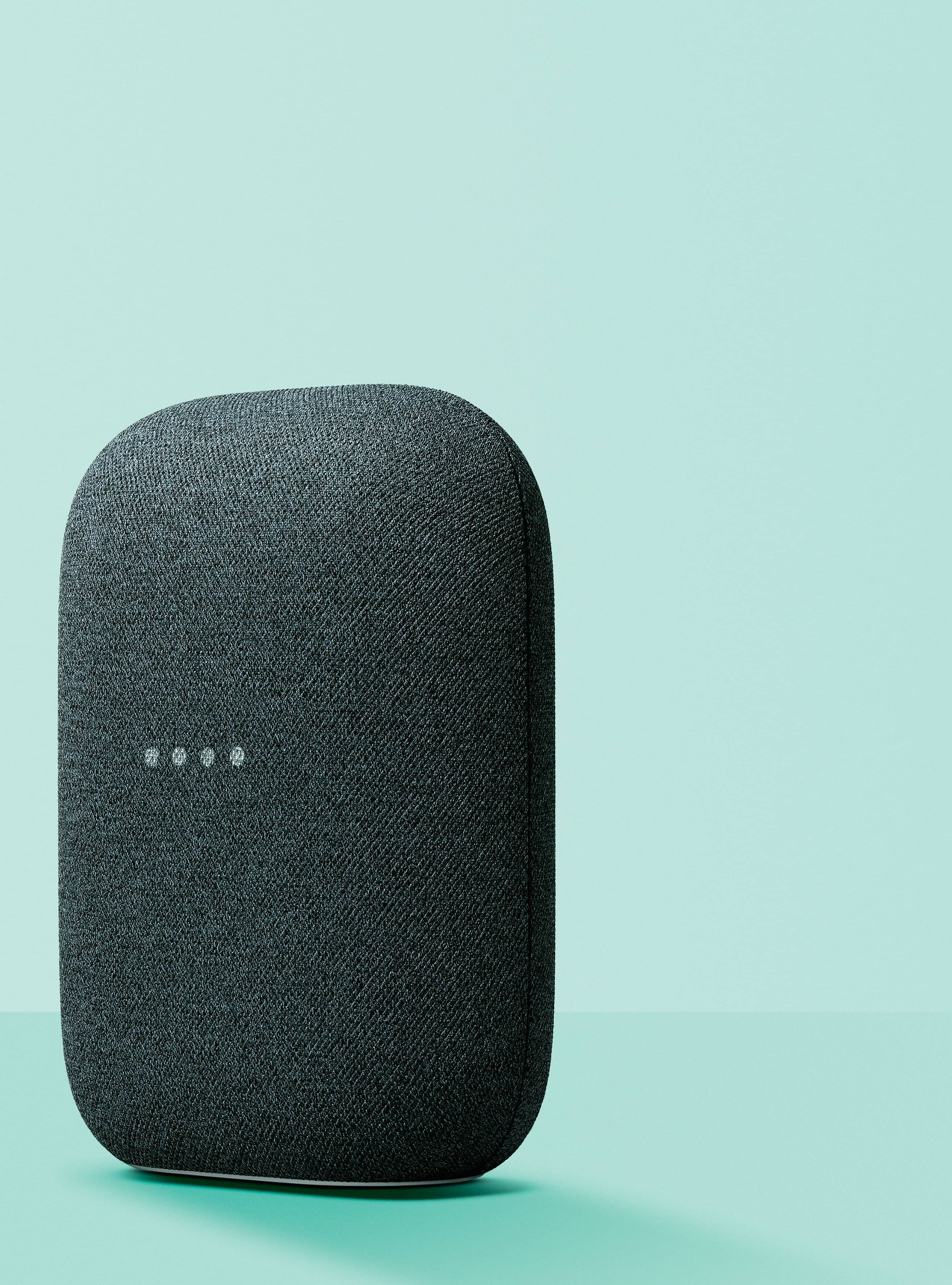 Simply The Nest - Google Nest Audio