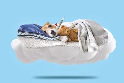 Five Ways To Cope With Sick Days