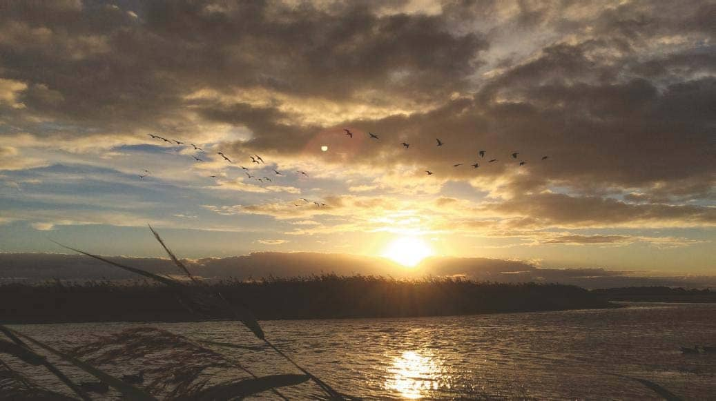 Wildfowlers face worrying future in sport's heartland