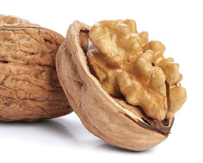 I Am Walnuts ... A Great Food For Thought