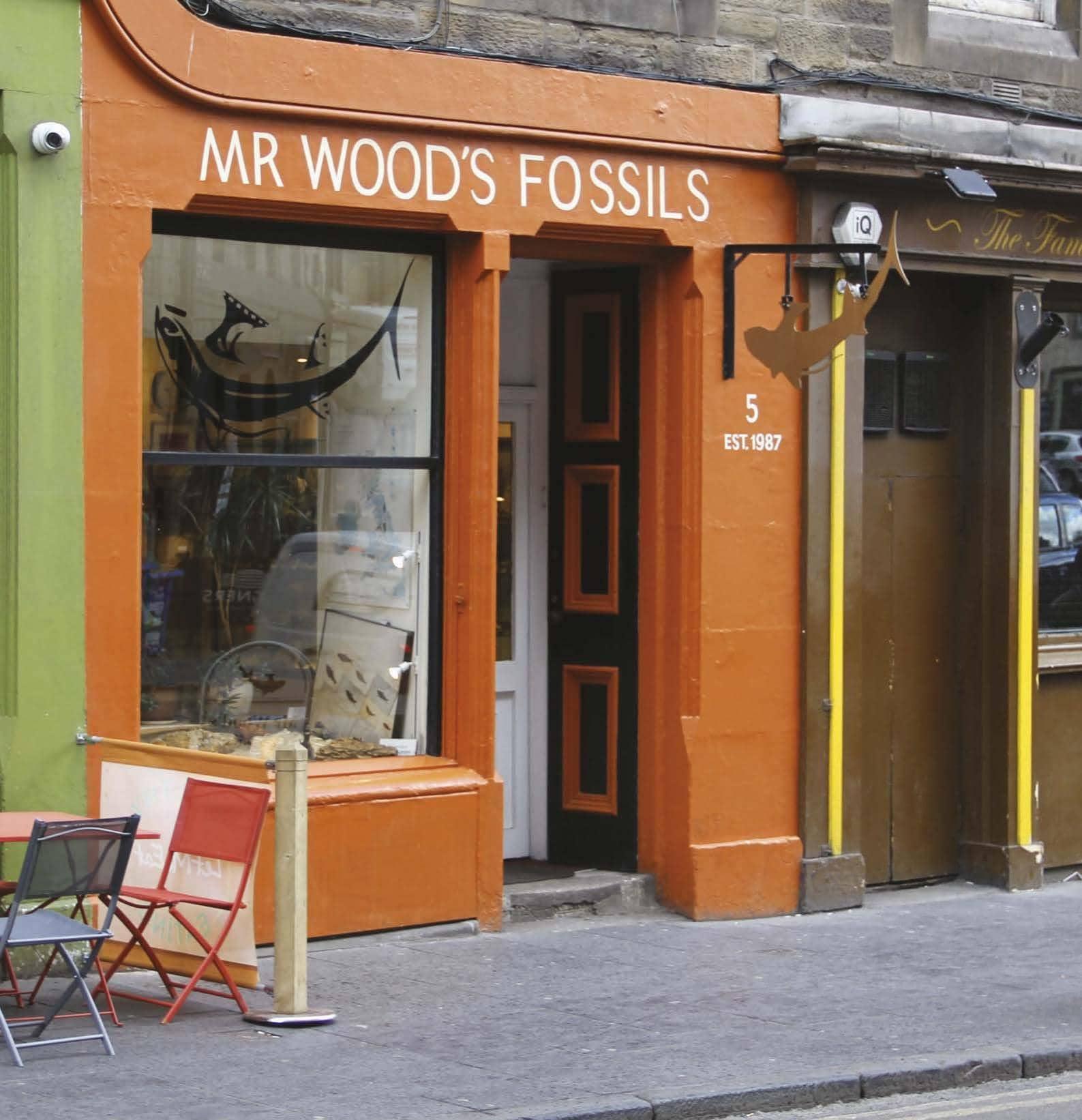 Rock Shops of Distinction MR. WOOD'S FOSSILS