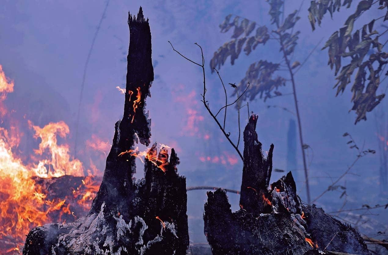 El Fuego De La Amazonia Alcanza A Bolsonaro