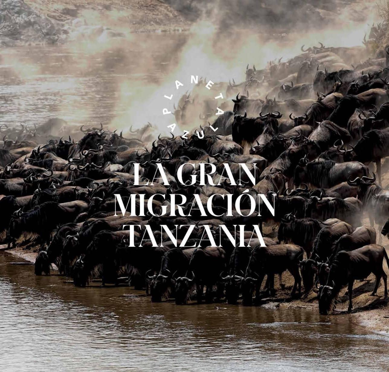 Lagran Migración Tanzania