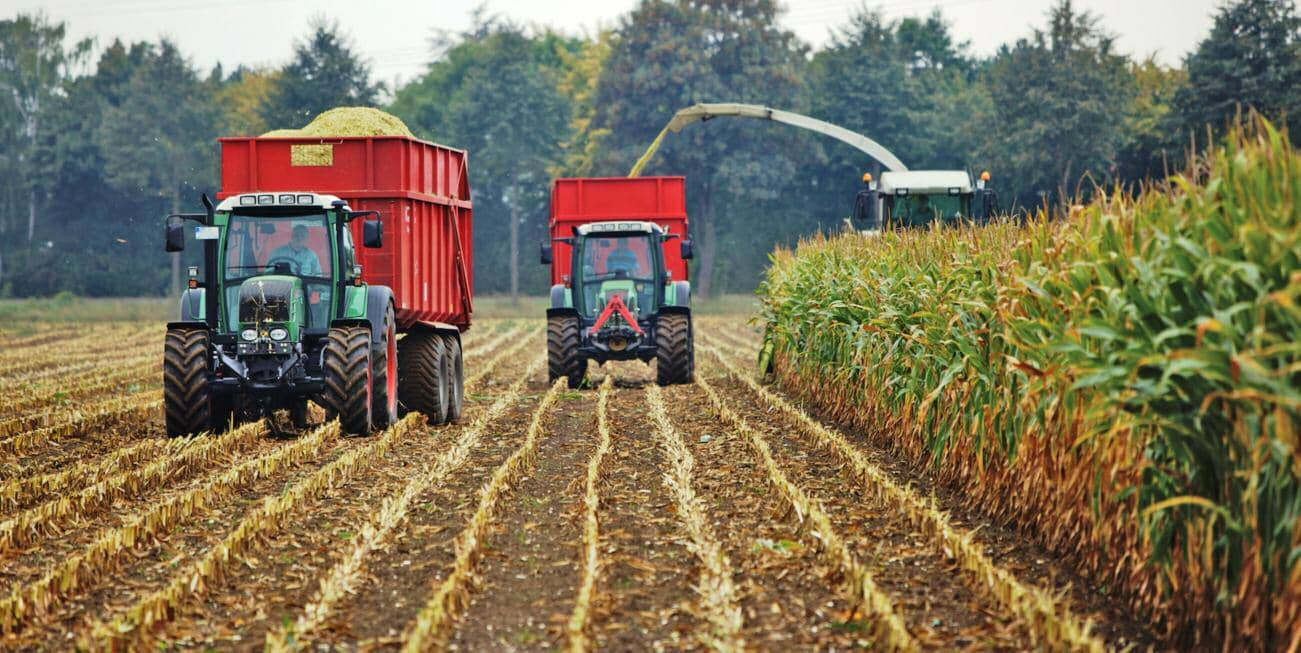 5 Common Mistakes To Avoid When Making Silage For Biogas