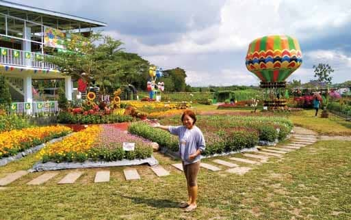 WASTELAND TURNED INTO FLOWER FARM FOR AGRITOURISM