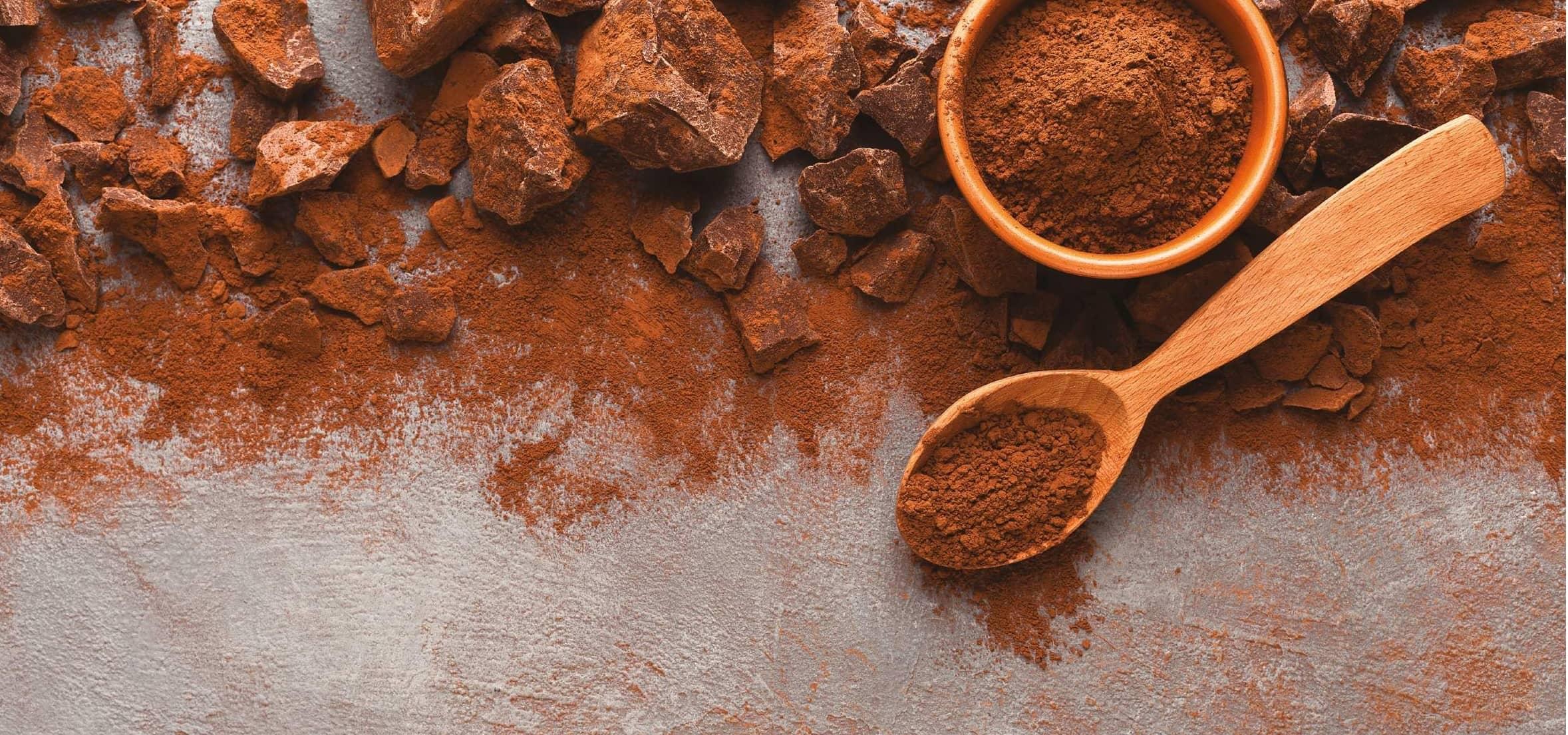Industria Del Chocolate Al Rescate Del Cacao Mexicano