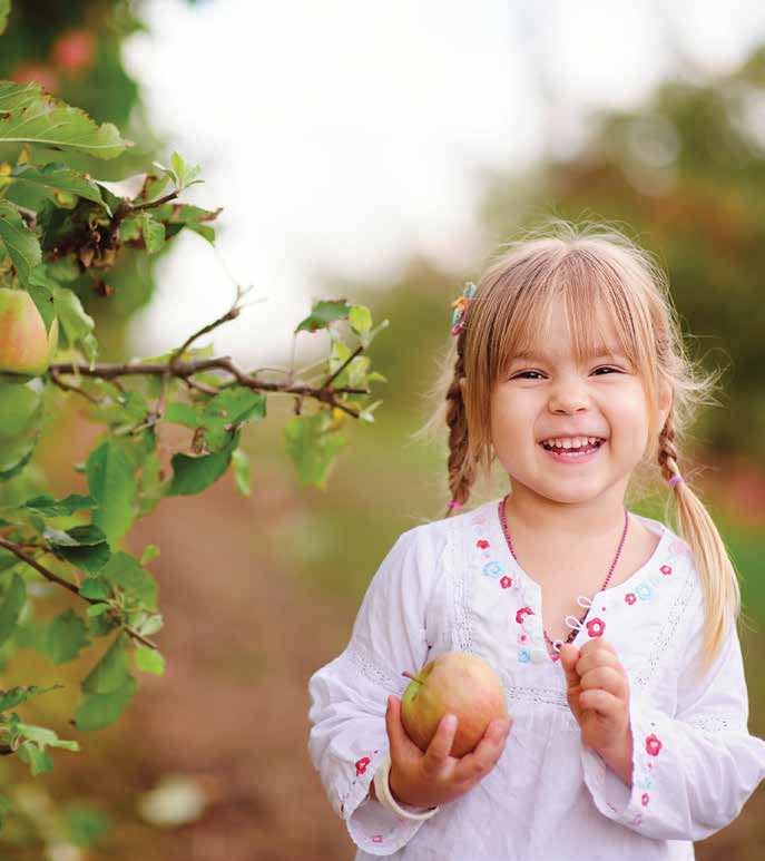 6 Tips To Get Kids To Eat Healthy