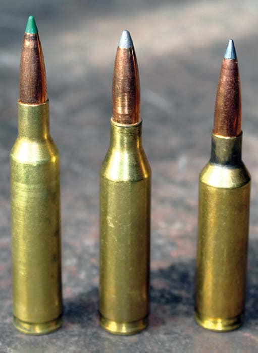 6mm Remington Loads for Most Big Game