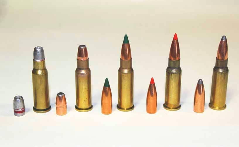 .256 Winchester Magnum