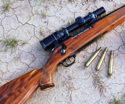 .416 Weatherby Magnum