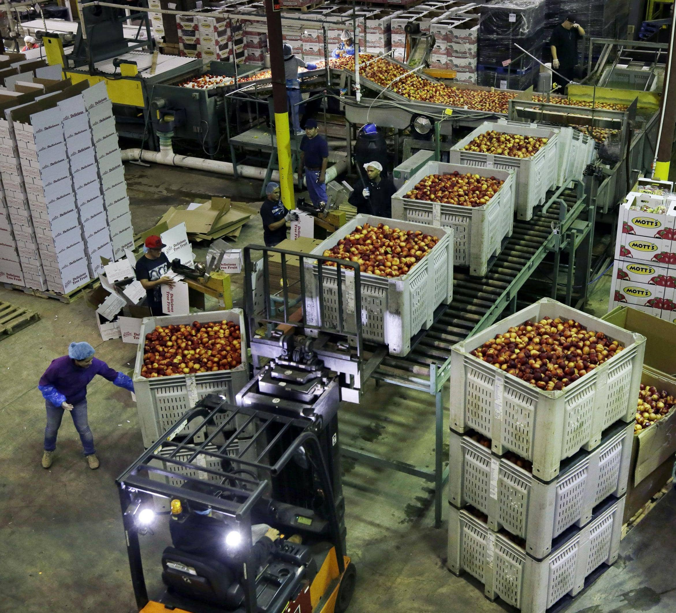US Wholesale Prices Fall 0.6%, Biggest Decline In 5 Years
