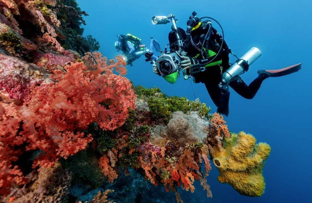Reap The Benefits Of Closed-Circuit Scuba