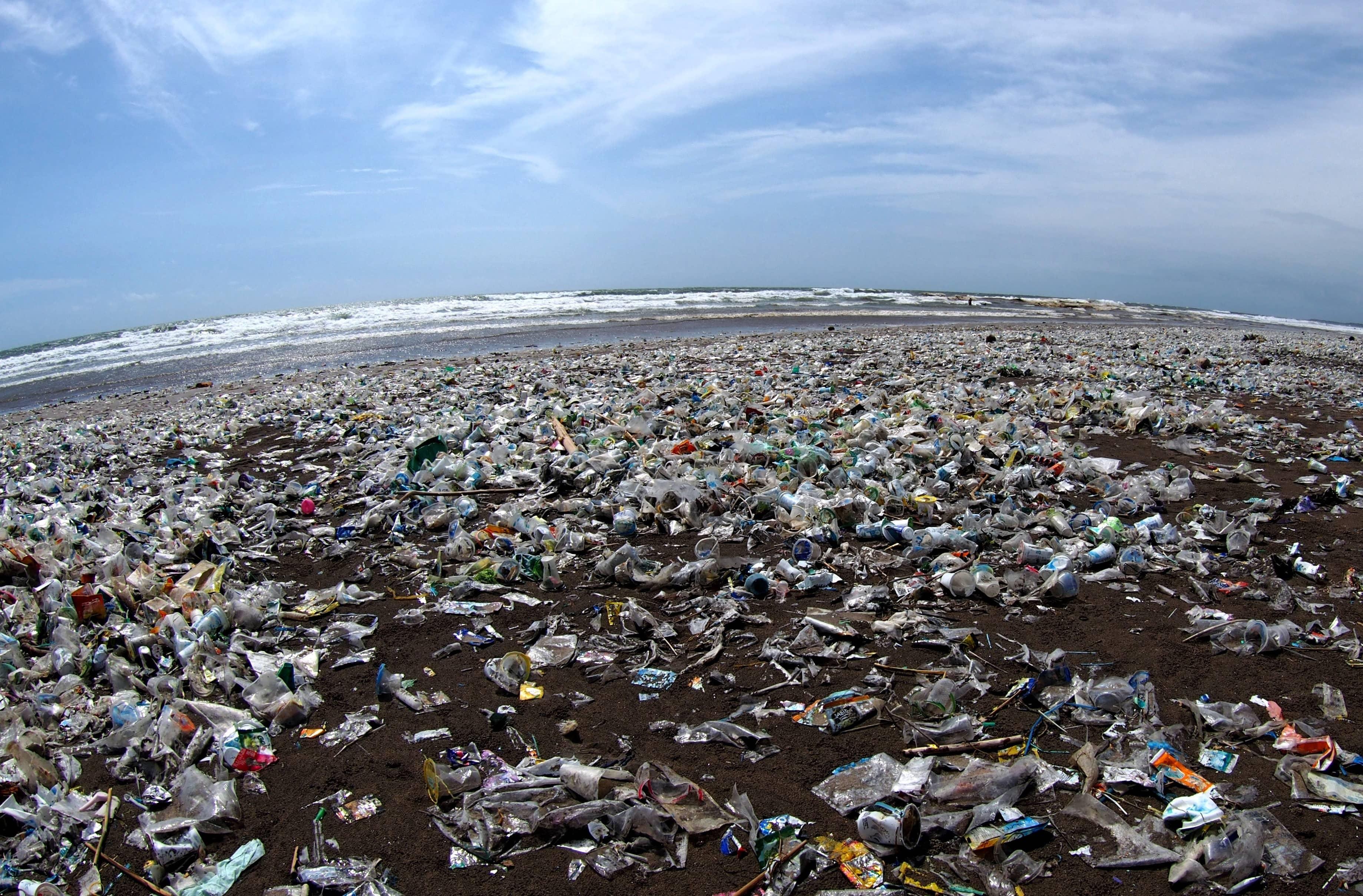 Purge Of The Plastic Pandemonium