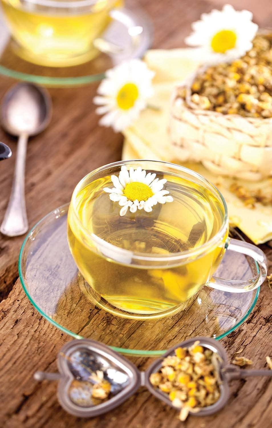 Chamomile Helps Arthritis, Blood Thinning and Mouth Pain