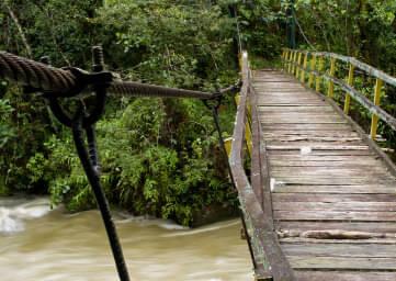 The Amazon Trail Global Warning