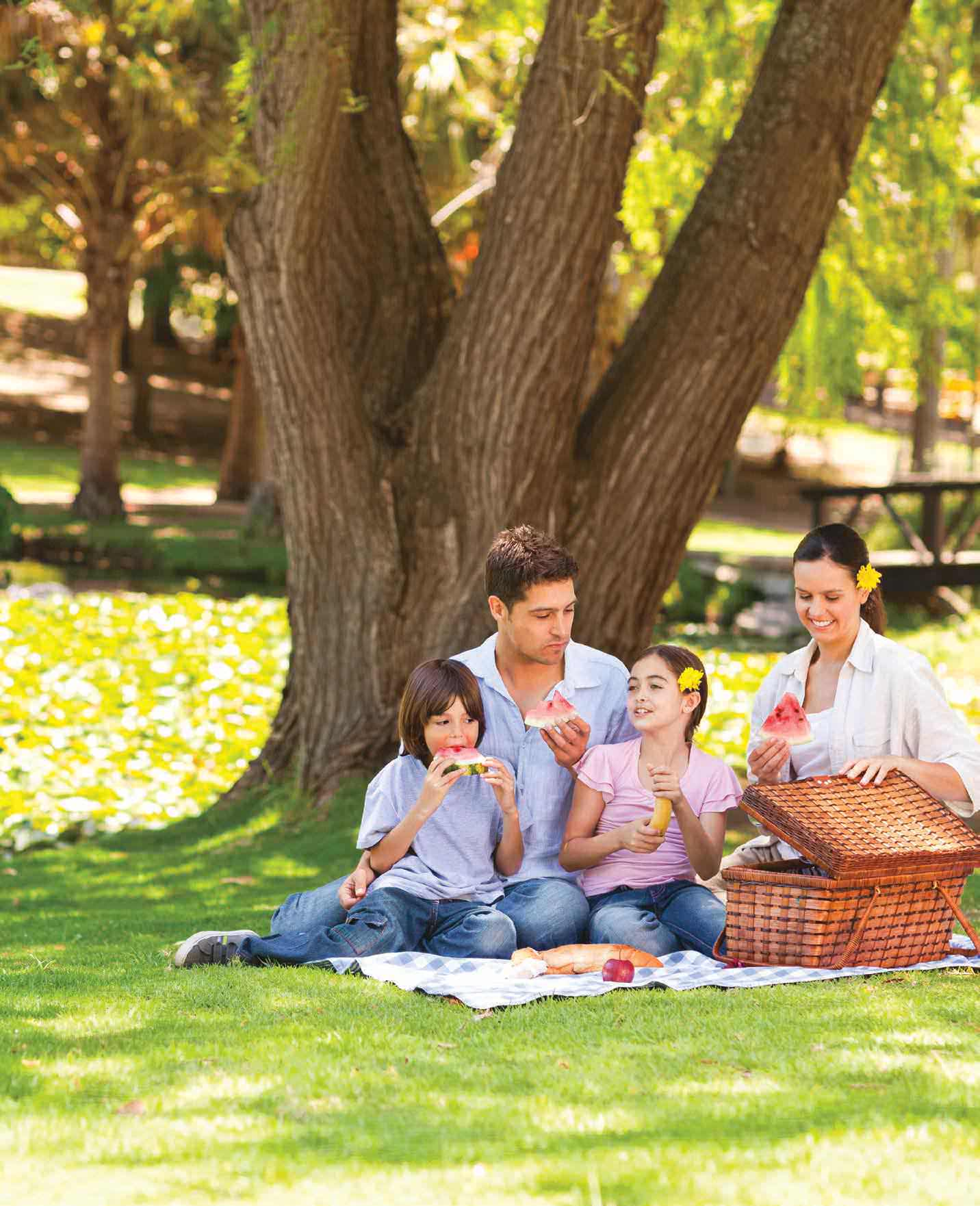 Plan The Perfect Spring Family Picnic