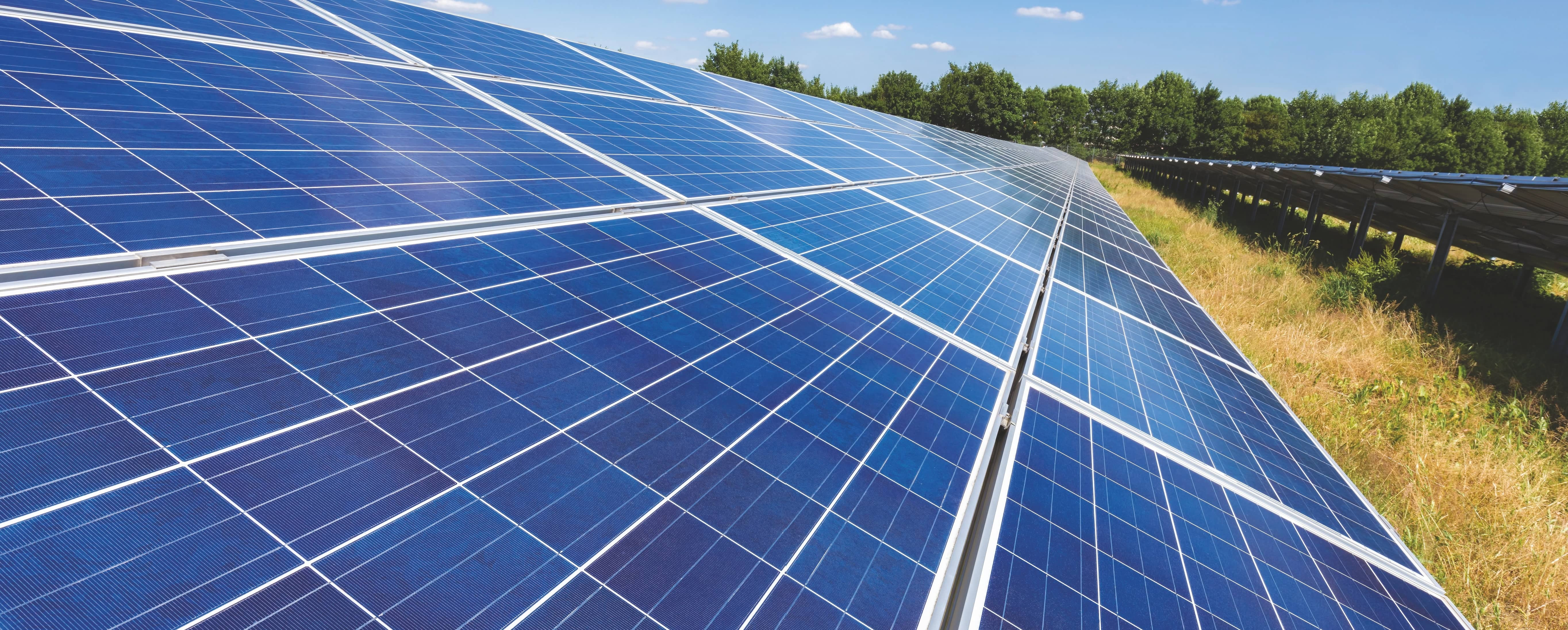 Dust Free Solar Panel For Efficient Electricity Production