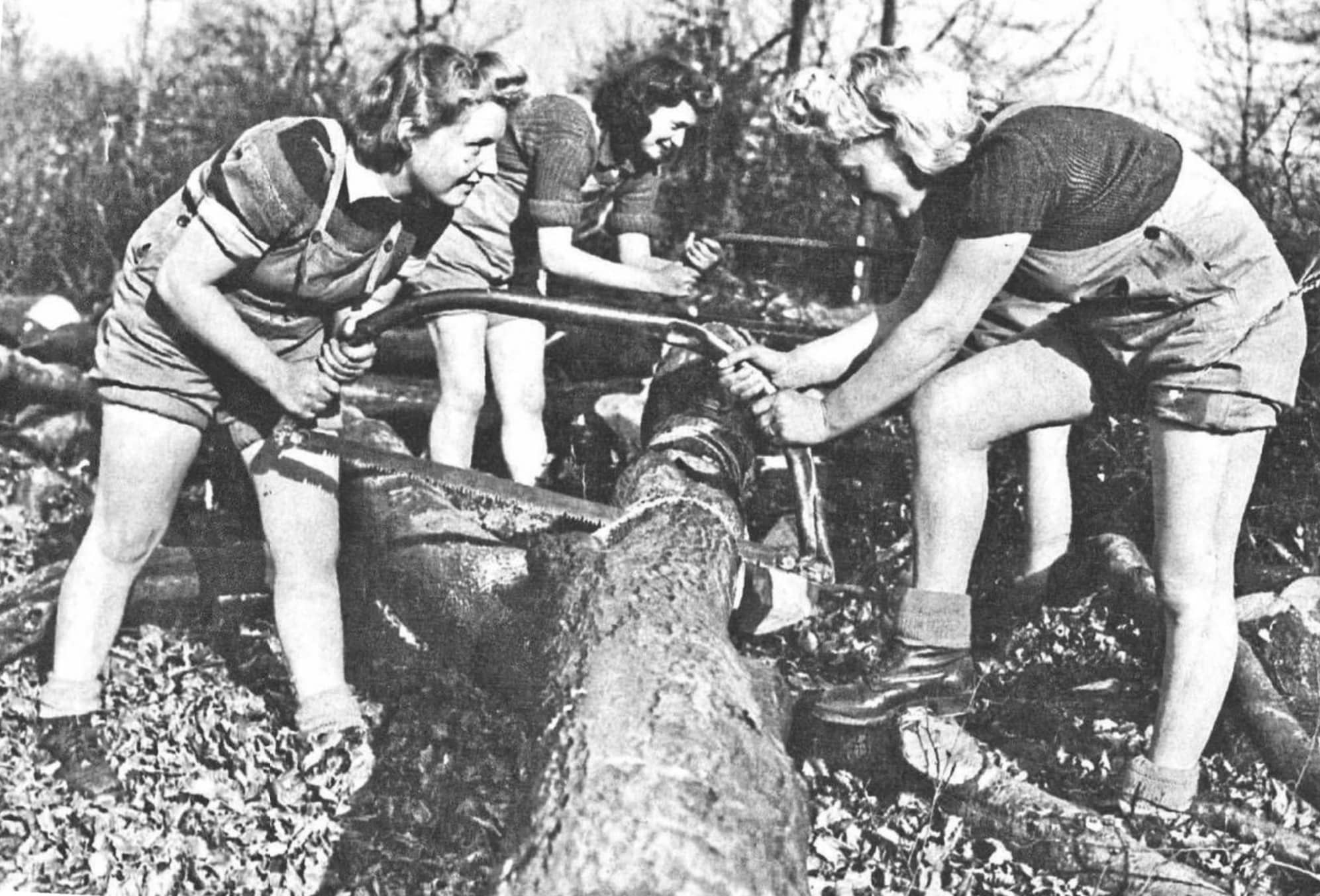 """""""I'm A Lumberjill...' - The Story Of The Women's Timber Corps"""