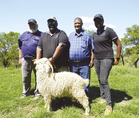 Mohair Farmers Going From Strength To Strength
