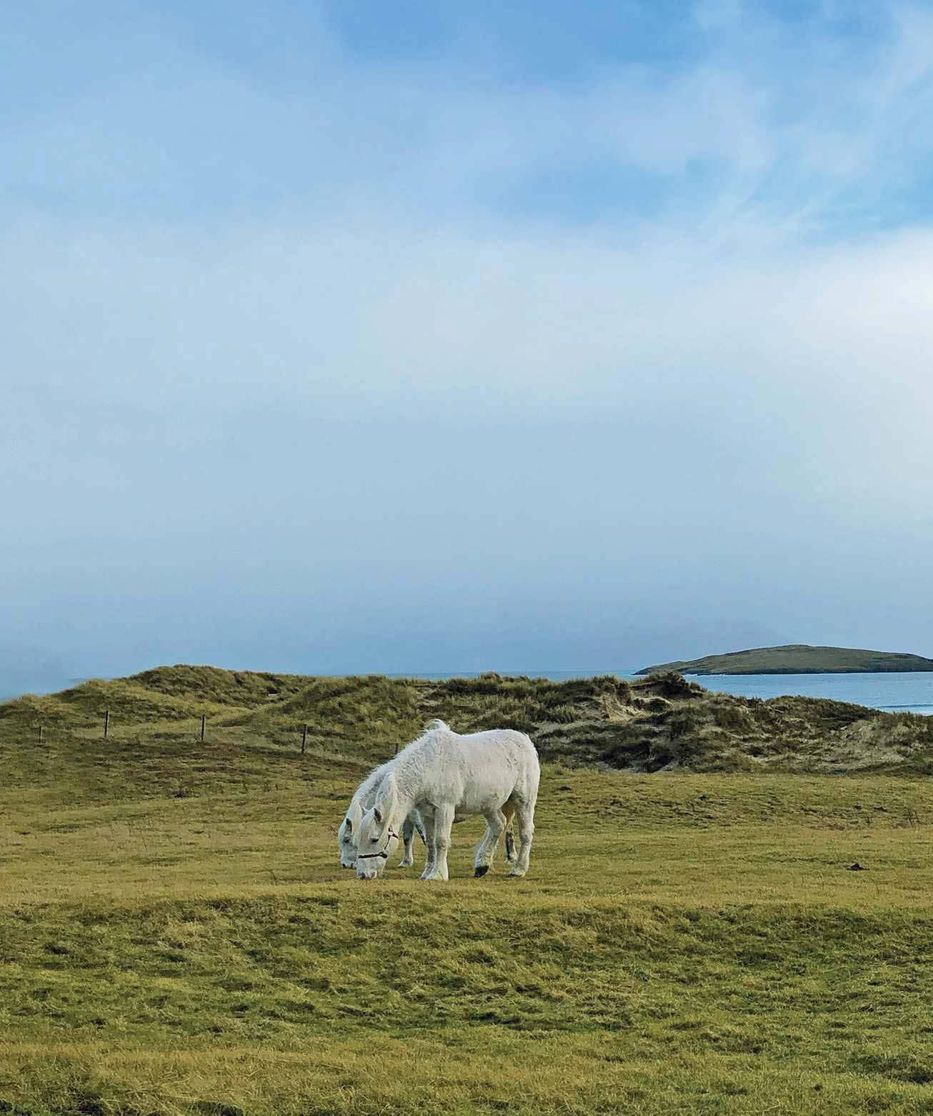 Movers, bakers & shakers - The Outer Hebrides