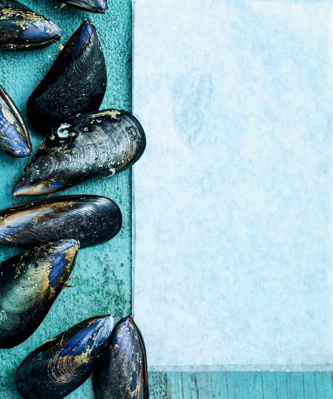 WHAT'S IN Season MUSSELS