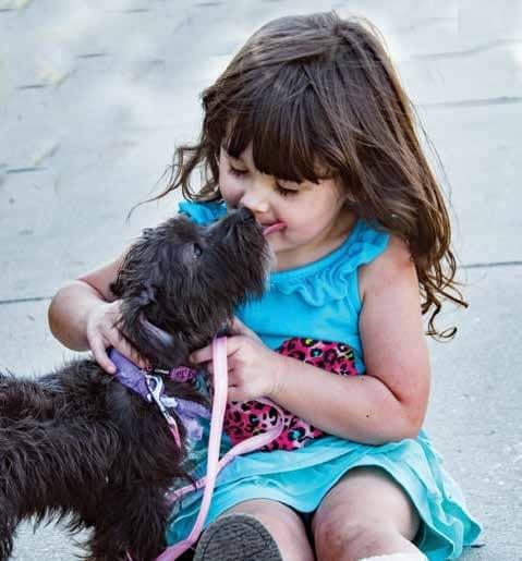 Coronavirus & Your Pets