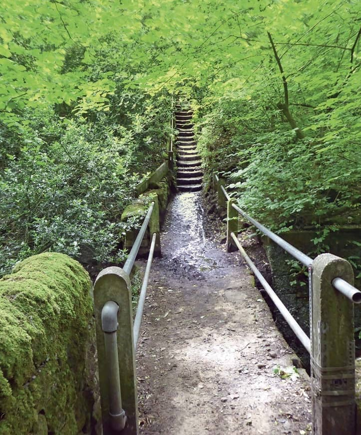 A walk back through time