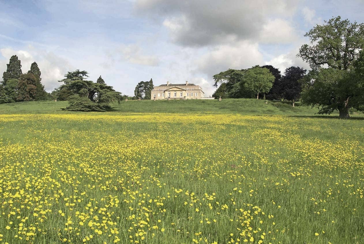 TOWN AND COUNTRY: Reigate & Bletchingley