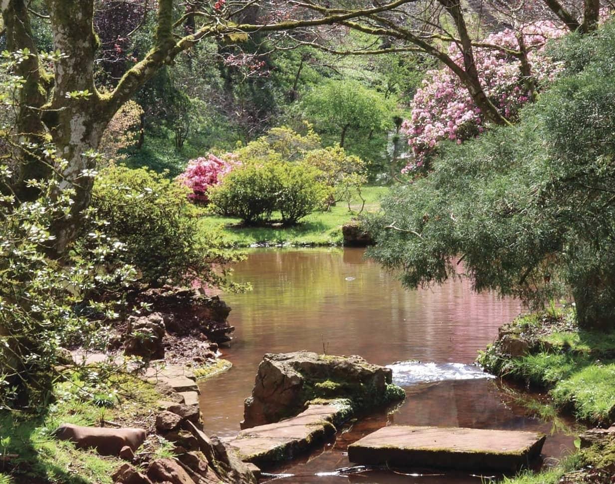 Spring Comes to the Secret Garden